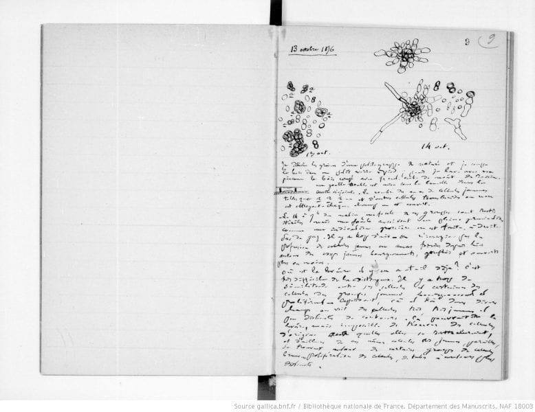 Cahier de laboratoire de Louis Pasteur